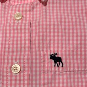 Boys Abercrombie pink gingham button down size XL
